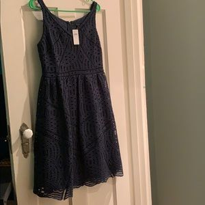 Ann Taylor Lace Flair Dress Spruce Green 6 - NWT